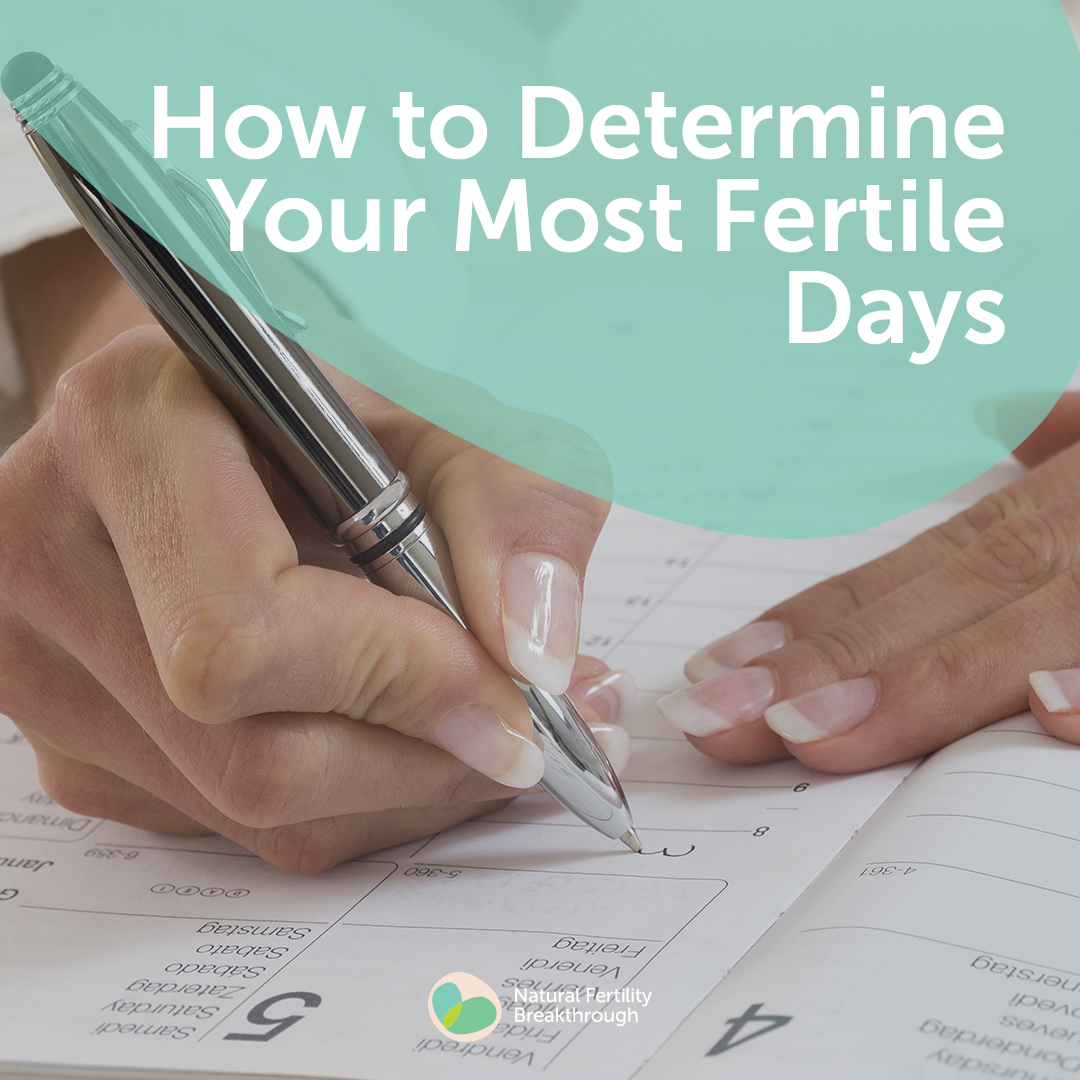How To Determine Your Most Fertile Days  Ovulation  How