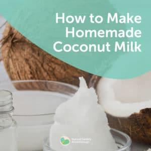 159a-How-to-Make-Homemade-Coconut-Milk