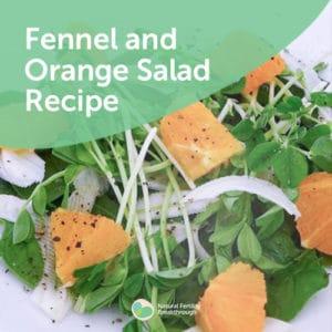 169-Fennel-and-Orange-Salad