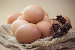 eggs are good source of protein