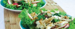 Fertility-Food-Revolution-Weekly-Meal-Plans_Kale-Chicken-Salad
