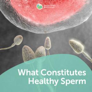sperm Man health