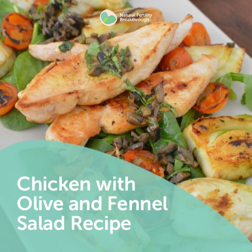Meal Plans & Recipes | Page 2 of 4 | Natural Fertility Breakthrough