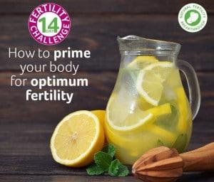 14dayfertilitychallenge_optimum nutrition for fertility