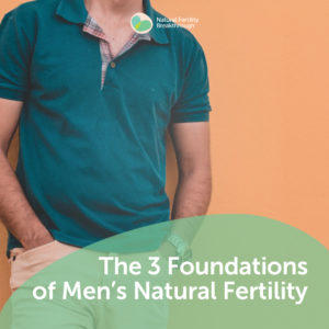 106a-The-3-Foundations-of-Mens-Natural-Fertility