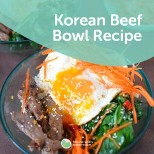 283-Korean-Beef-Bowl-