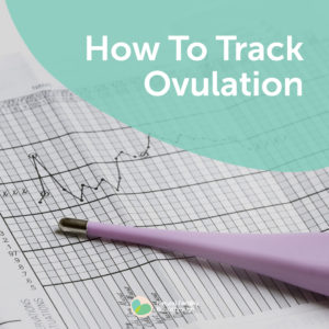142a-How-To-Track-Ovulation