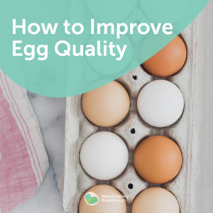 147-Fertility-FAQ-How-to-Improve-Egg-Quality