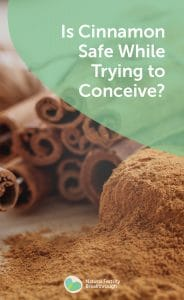 Is cinnamon safe while trying to conceive? | Fertility FAQ