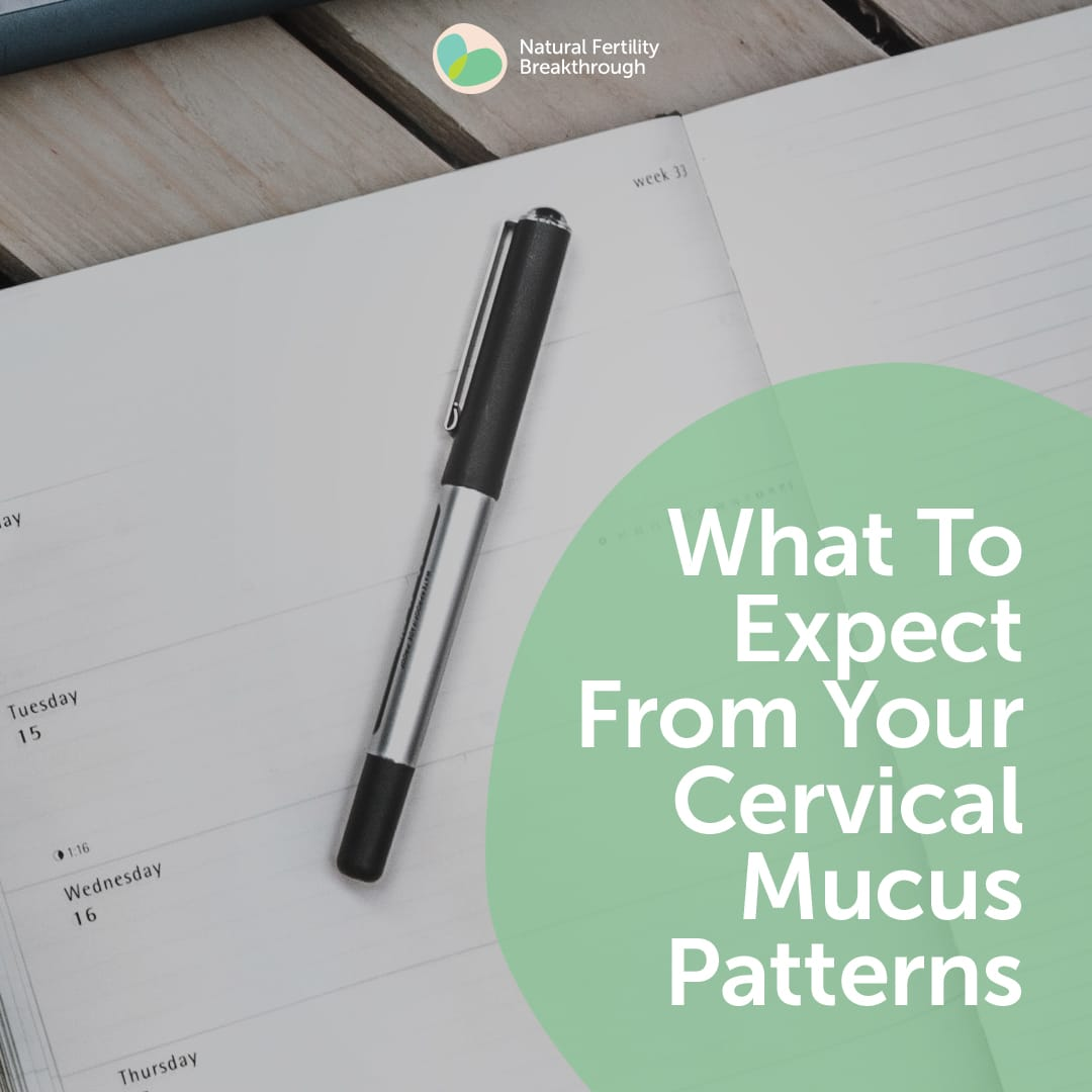 What To Expect From Your Cervical Mucus Patterns | Ovulation | How