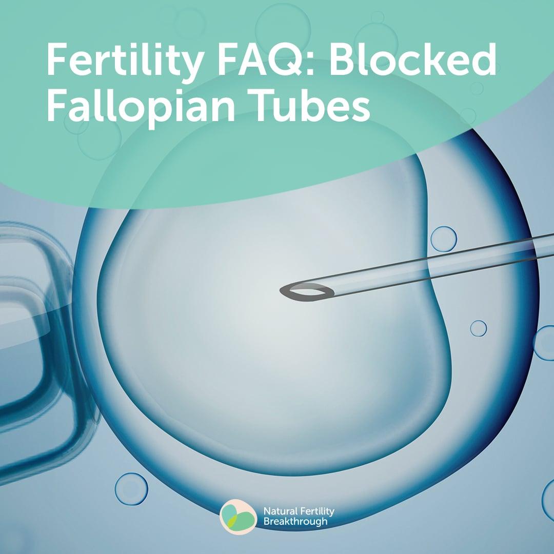 Blocked Fallopian Tubes | 14 Day Fertility Challenge FAQ's