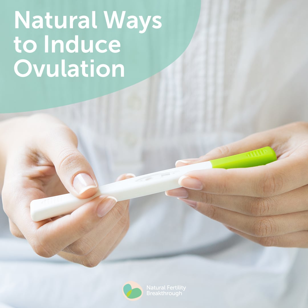 Natural Ways To Induce Ovulation  Ovulation  How To Get -4373